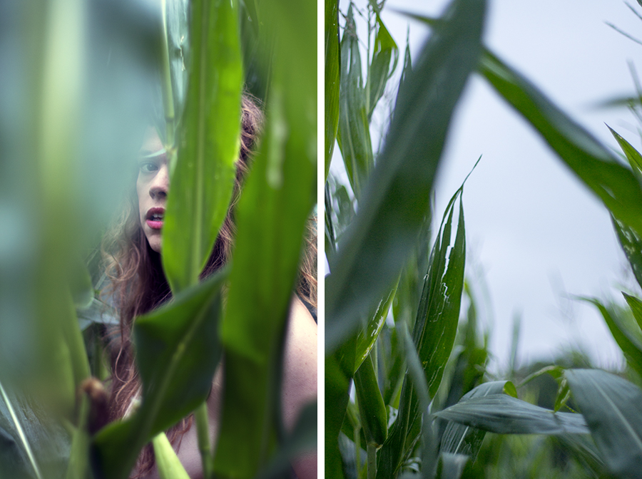 Corn Field Woman Concept Portrait Photographer Blue Photography